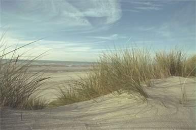 Massif dunaire de la Baie de Somme